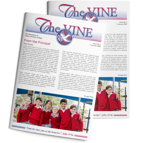 Download Vol 14 of The Vine newsletter